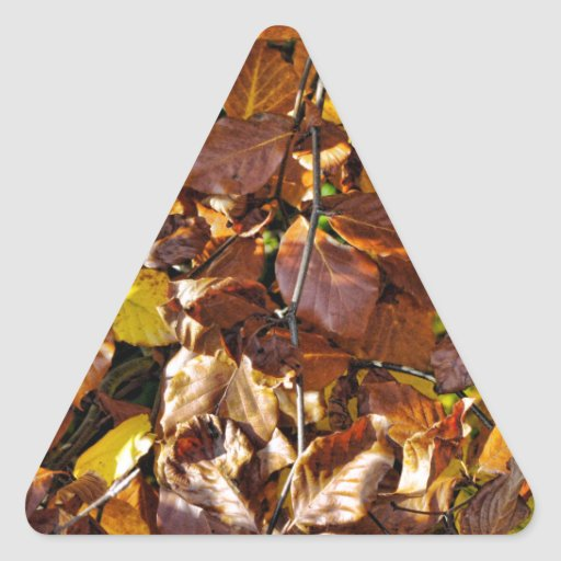 Images of Autumn Triangle Sticker