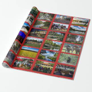 Images of Ocala with red background Wrapping Paper
