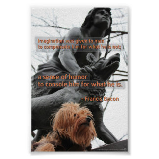 Imagination and Humor Quotation Poster