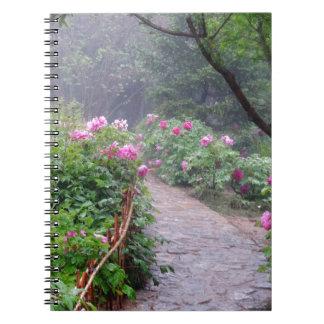 Imagination Awaits Spiral Note Book