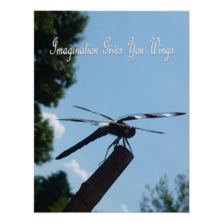 Imagination dragonfly Poster 2