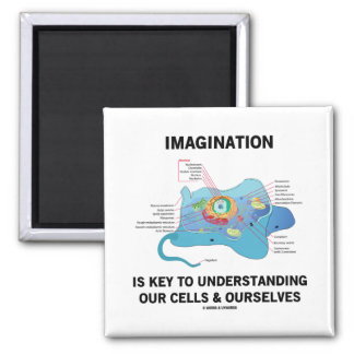 Imagination Is Key To Understanding Our Cells Square Magnet