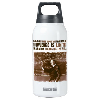 Imagination is more important than knowledge 10 oz insulated SIGG thermos water bottle