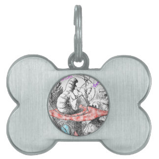 Imagination is the only weapon in the war... pet tag