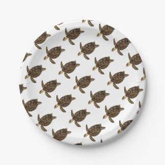 Imbricata turtle 7 inch paper plate