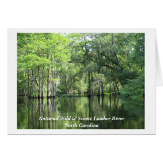 Img_0027, National Wild & Scenic Lumber River N... Card
