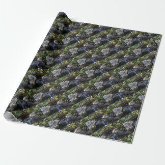 IMG_0473.JPG WRAPPING PAPER
