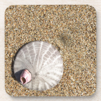IMG_0578.JPG  Sandollar seashell on beach Coaster