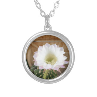IMG_0656.JPG SILVER PLATED NECKLACE