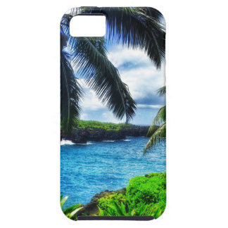 IMG_1122 4 Hawaiian Scene iPhone 5 Cover