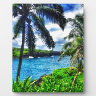 IMG_1122 4 Hawaiian Scene Plaque
