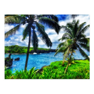 IMG_1122 4 Hawaiian Scene Postcard