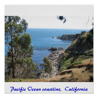 IMG_3376, Pacific Ocean coastline,  California Poster