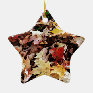IMG_4035.JPG CERAMIC STAR ORNAMENT