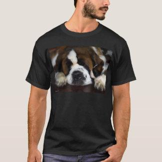 IMG_4069 T-Shirt
