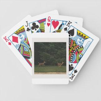 IMG_9284.JPG BICYCLE PLAYING CARDS