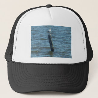 IMG_9322.JPG TRUCKER HAT