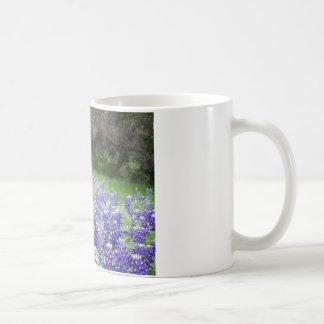 IMGP4308 COFFEE MUG