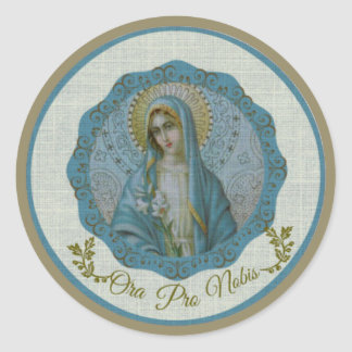 Immaculate Virgin Mary Vintage Texture-like Classic Round Sticker