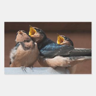 Immature Barn Swallow (Hirundo Rustica) Sticker