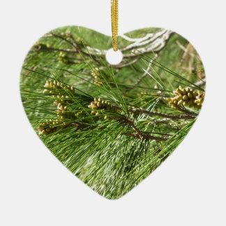 Immature male or pollen cones of pine tree ceramic heart ornament
