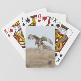 Immature Red Tailed Hawk Hovering Poker Deck
