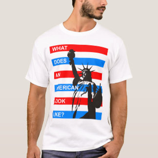 Immigration 4 T-Shirt