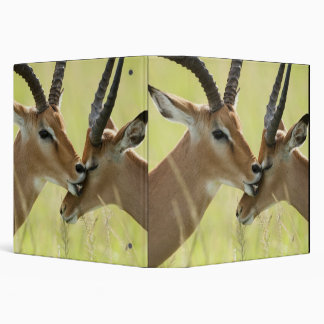Impala, Aepyceros melampus, in the Masai Mara Vinyl Binders