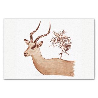 Impala Antelope Animal Wildlife Drawing Sketch Tissue Paper