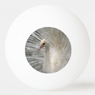 Imperial Peacock Ping Pong Ball