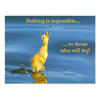 Impossible Duck Postcard