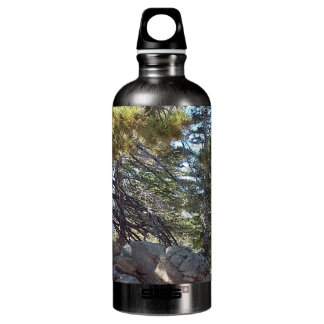 Impression Nature USA Water Bottle