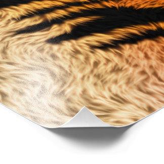 Impression Photo Fourrure d'animal de tigre de Bengale
