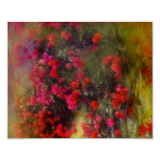 Impressionism Red Bougainvillea Poster