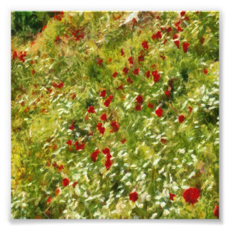 Impressionist Poppies Photographic Print