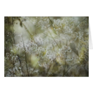 Impressions Thank You Note Card