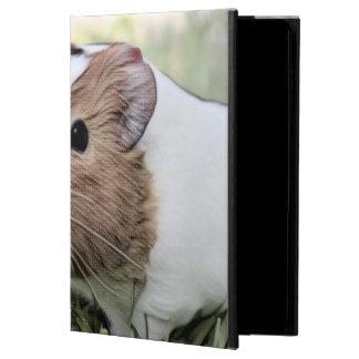 impressive animal -Guinea pig Powis iPad Air 2 Case