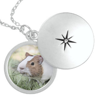 impressive animal -Guinea pig Sterling Silver Necklace