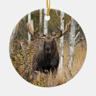 Impressive Bull Moose Ceramic Ornament