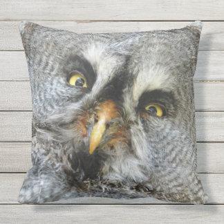 Impressive Owl Eyes Throw Pillow