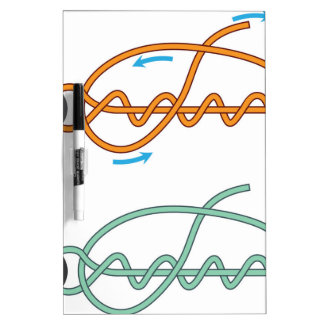 Improved clinch knot diagram two color version dry erase board