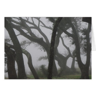 In a Fog Card