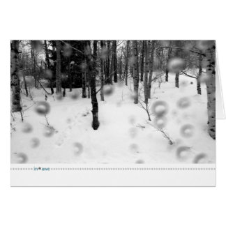 in*awe_rain forest card