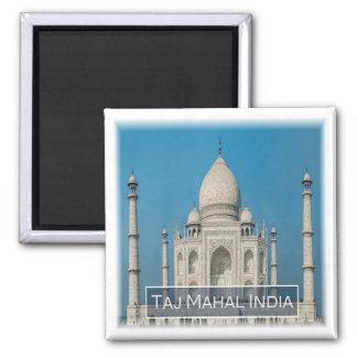 IN * India - The Taj Mahal Magnet