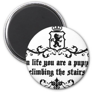 In Life You Are A Puppy Climbing The Stairs Magnet