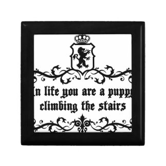 In Life You Are A Puppy Climbing The Stairs Trinket Boxes