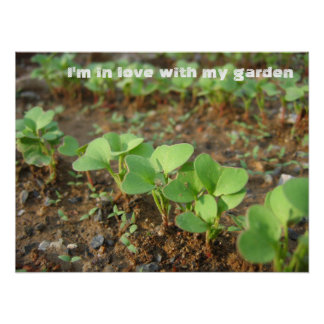 In Love With Garden - Poster