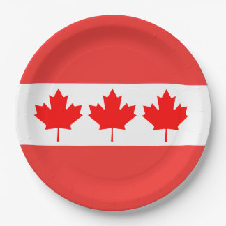In Order Canada Day Party Paper Plates