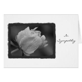 In Sympathy Peony 2 Greeting Card