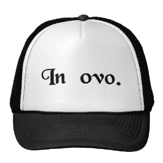 In the egg trucker hats